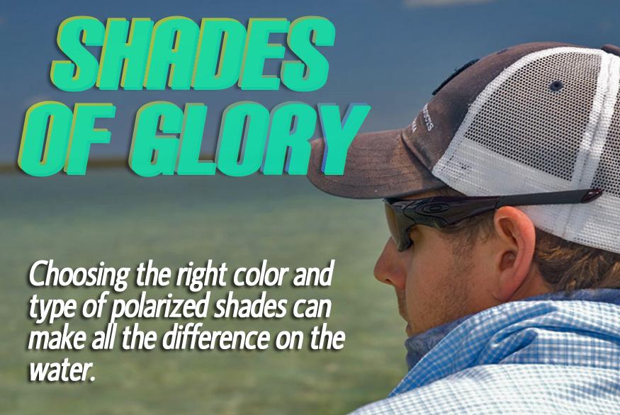 shadesofglory copy