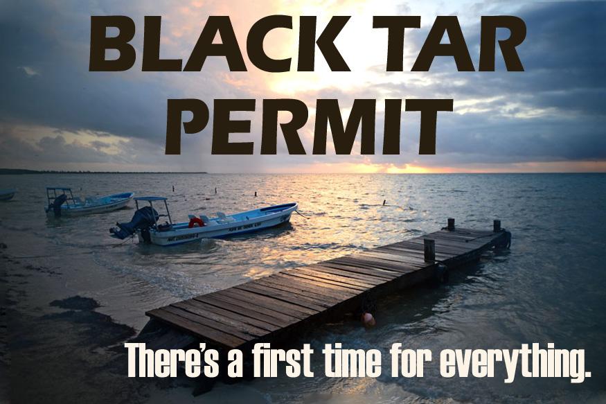 blacktarpermit